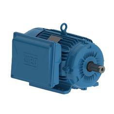 Motor-Eletrico-3CV-2-Polos--Monofasico-Blindado-IP55-220V---Weg